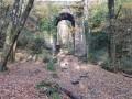 Sentier de la Citardière - Forêt de Mervent