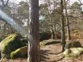Le Mont Ussy, le Rocher Cassepot et la Tour Denecourt