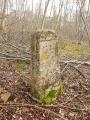 Des Etangs de Commelles à la Forêt de Coye