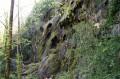 Les Cascades de Roquefort à sec ! mais si jolies...