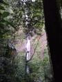 Cascade N° 1