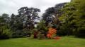 De Boulogne à Bougival par le Parc de Saint-Cloud et le Bois de La Celle