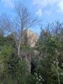 Les moulins du Vidourle et Montredon
