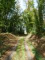 D'Eppe-Sauvage à Sivry, le voyage de la cigogne noire ValSy
