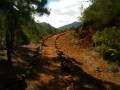 Chemin bordé de pierres