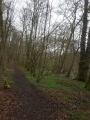Chemin des Sangliers