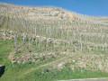 Tupin, Condrieu, Semons: entre Rhône et vignobles