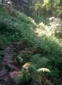 Deuxieme partie de la randonnée