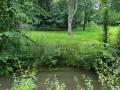 En amont des petits étangs