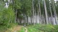 Boucles à l'ouest de Bouillon le long de la Semois
