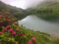 Les Etangs de Bethmale et d'Ayes : deux étangs, deux ambiances
