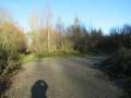Bois de Bierwart
