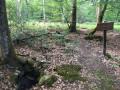 Chemins et sentiers de la Forêt de Tronçais à Meaulne-Vitray