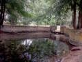 Le circuit du Bois Riveau et des Grands Bois