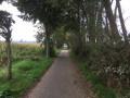 Chemin de promenade