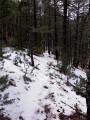 Une boucle vers le Rat dans le Massif du Mont Ventoux