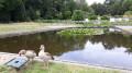 Jardin du fleuriste