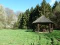 Autour de Grancourt par la Forêt d'Eu