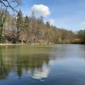 Boucle dans les bois et campagnes au nord de Biesme (entité de Mettet)