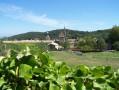 La Chartreuse de Valbonne