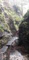 Gorges de Sucha Bela