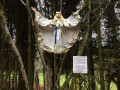 La Forêt - Sentier des Légendes - Dame Blanche