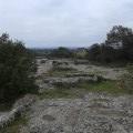 La garrigue près de Saint-Chaptes