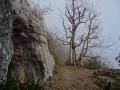 La grotte au dessus de Culles les Roches