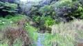 La Mare par la Forêt des Hauts de Mont Vert