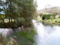 Les étangs et la forêt de Saint-Hellier