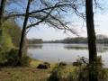 Tour du Lac de Vioreau