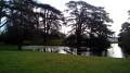 Du Parc de Saint-Cloud au Bois de Boulogne