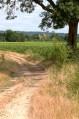 La boucle de la Dordogne entre Pessac-sur-Dordogne et Ribebon