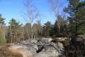 Randonnée en forêt de Fontainebleau : le tour des Gorges d'Apremont