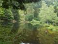 De Mittlach au Lac de Fischboedle