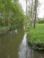 Le Marais Sauvage entre Damvix et la Rivière