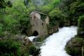 Traversée des forêts de la ligne de partage des eaux en Languedoc