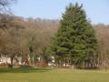 Le parc Hauster