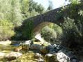 Le pont del Rey