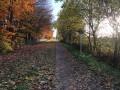 Rocourt - Lantin - Juprelle - Liers par les champs et le RAVeL