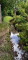 Le vallon du Ruisseau Henri-Fontaine entre Orp et Grand-Hallet