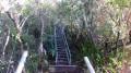 La Route Forestière de la Scierie par le Sentier de la Onzième Ligne