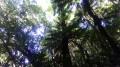Le Sentier de la Découverte dans le Bois Bon accueil