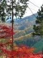 Du mont Mitaké aux sources thermales Tsurutsuru Onsen