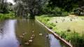 Parc du roi Baudouin