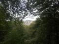 Point de vue sur Orchimont