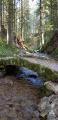 Pont le long de la Bourrique