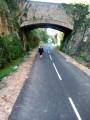Pont sur la voie verte