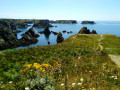 Belle-ÎIe en Mer : Donnant - Pointe du Talut