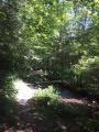 Pour enjamber le ruisseau de Bellefontaine